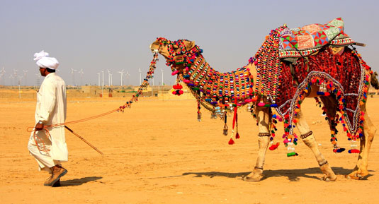 colourful rajasthan Tour Packages