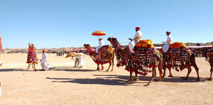 Camel safari In Rajasthan tour and travel guide