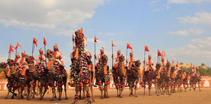 Camel Festival Bikaner in Rajasthan tour and travel guide