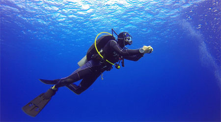 Kochi Snorkeling
