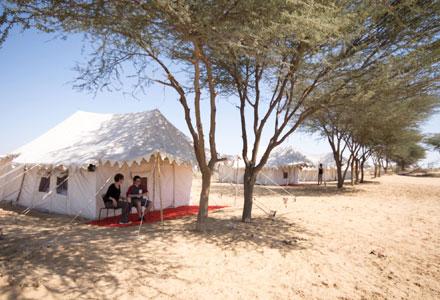 Bikaner Desert Camping