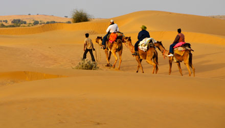 Thrilling Camel safari in the dunes