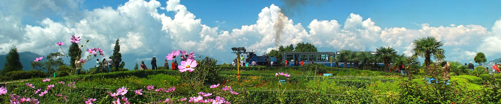 tourist attractions and things to do in Darjeeling