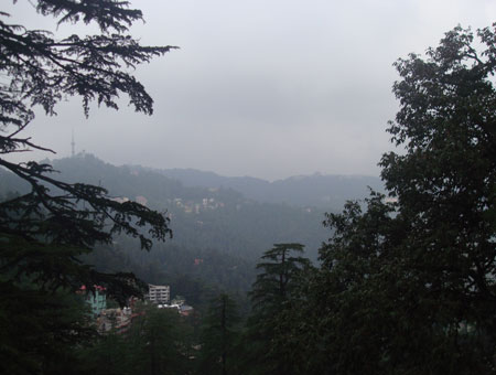 Kiala Forest in shimla