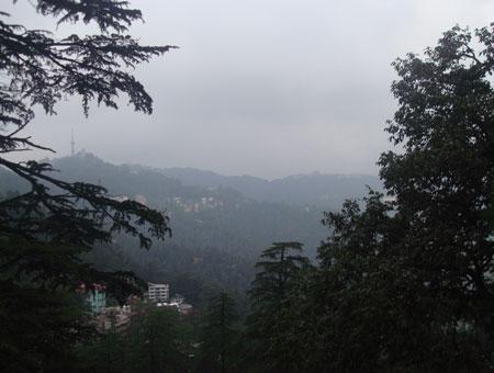 Kiala Forest in shimla