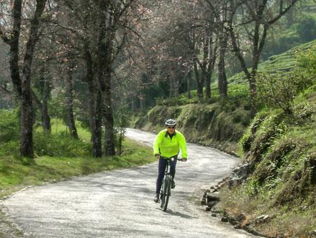 Mountain biking in Darjeeling