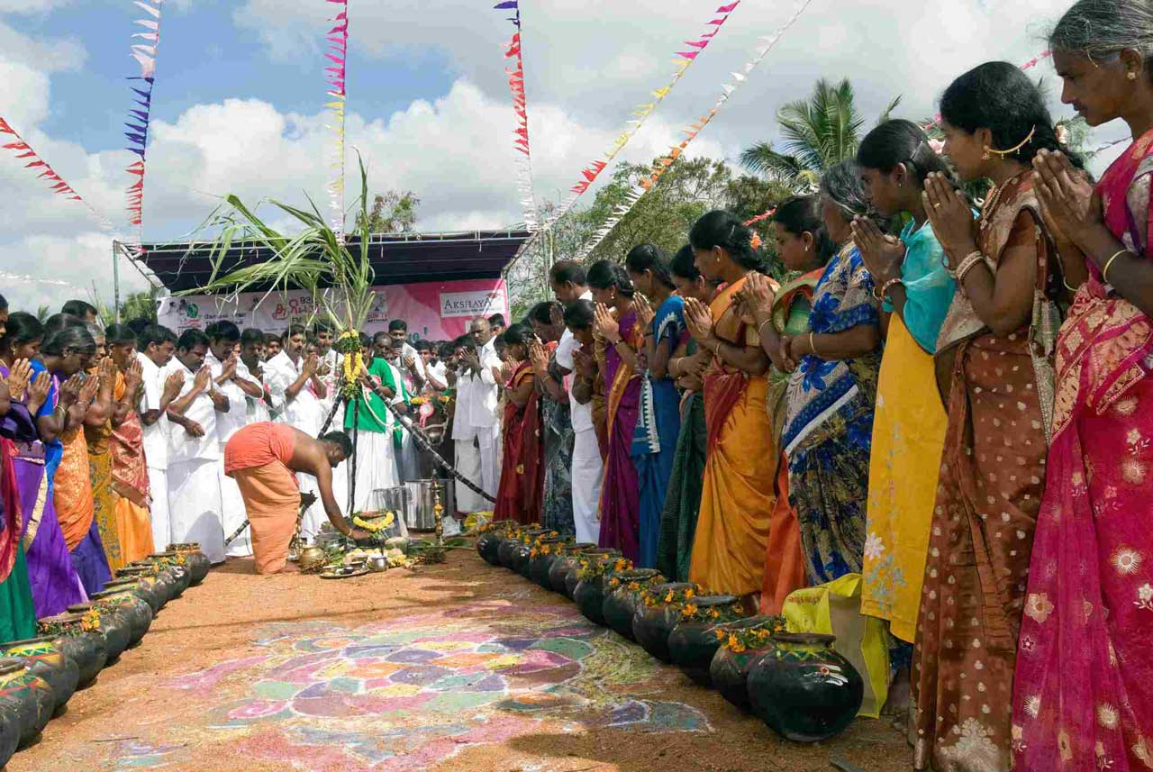 cultural festivals in India, Pongal