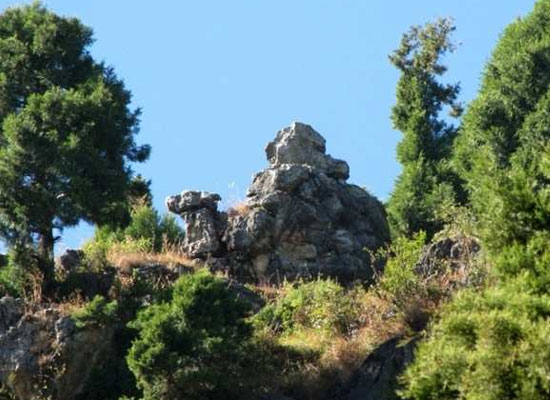 Camel's Back Road in mussoorie